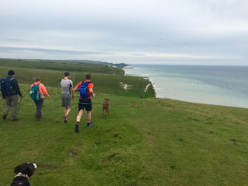 Canicross on the Seven Sisters at Beachy Head Marathon 2015