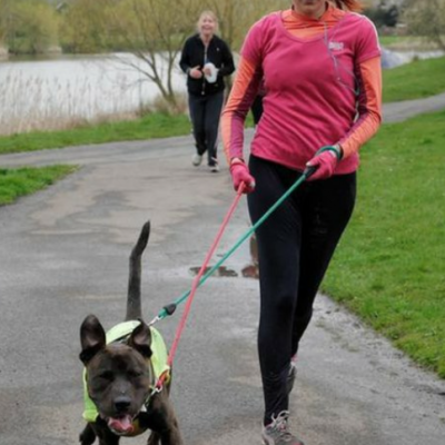 running with a rescue dog at parkrun
