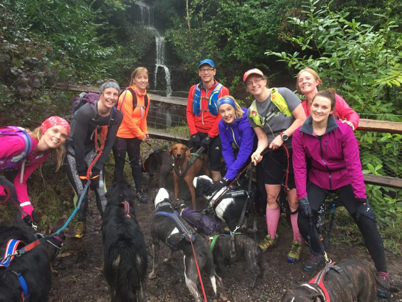 running with dogs and canicross
