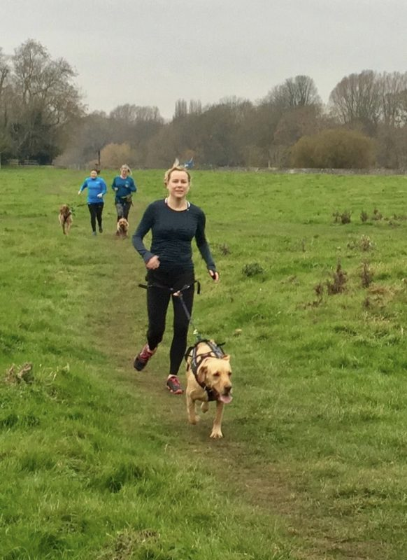 canicross running with DogFit Trainers