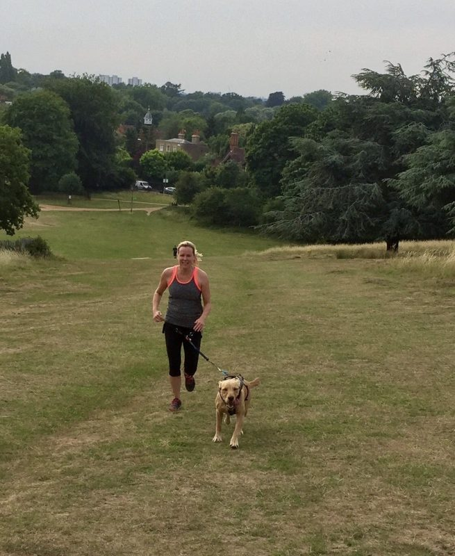 Running with dogs in Surrey