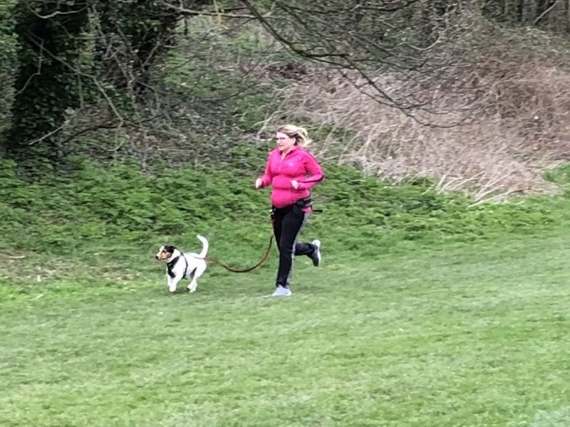 canicross with DogFit trainer