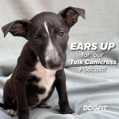 Listen to our Canicross Podcast